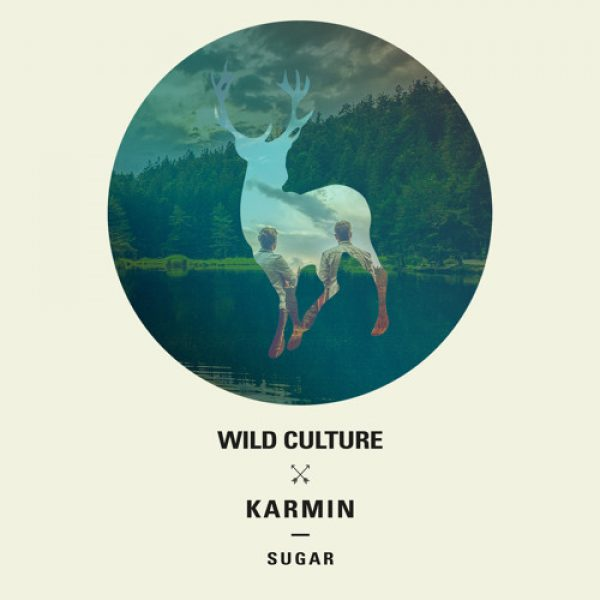 Wild Culture vs. Karmin – Sugar